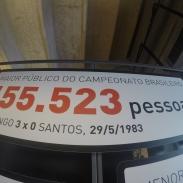 Maior Público do Brasileirão.