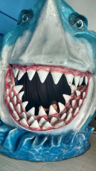Na boca do Tubarão