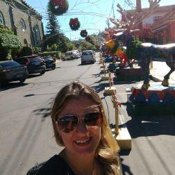 Rua de Gramado enfeitada