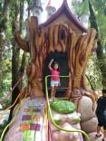casinha na árvore